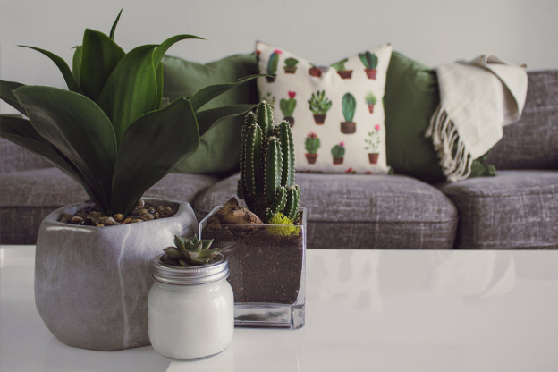 10 Home Decor Ideas with greenery & budget-friendly ways