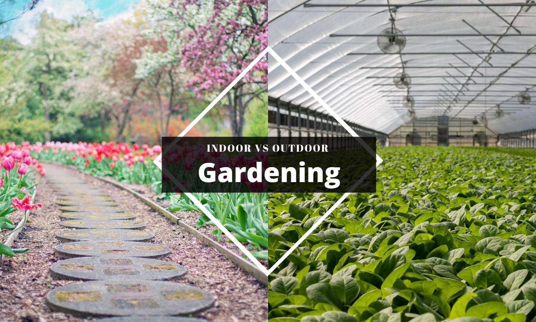 Indoor Gardening over Outdoor Gardening